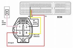 Oxygen Sensor Wiring Diagram 2005 Dodge Grand Caravan