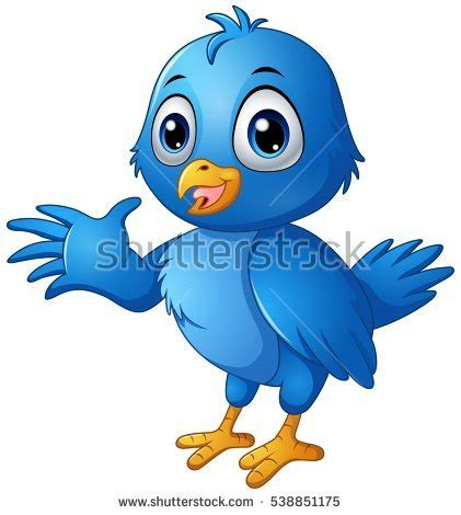 bird stock images royalty free images vectors