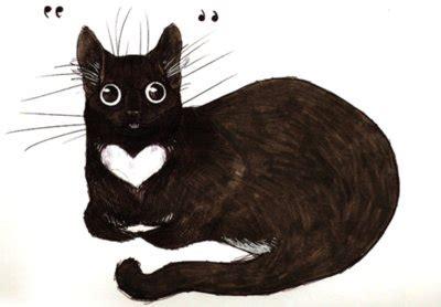 black cat cute draw drawing image   favimcom