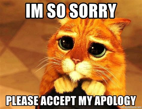 Apology Meme Im So Sorry Accept My Apology Puss In Boots Big