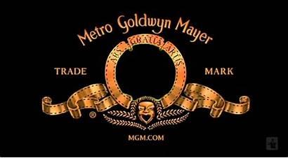 Metro Mayer Goldwyn Mgm Meme Dog Random