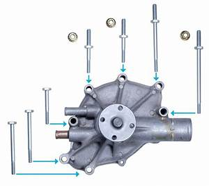 5 0 302 Factory Correct Mustang Water Pump Bolt Kit Gt Lx