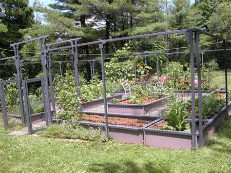 electric fence wire modern backyard vegetable garden house design with high