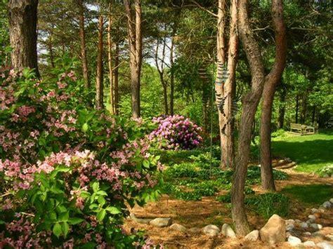 michigan wooded garden garden design