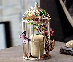 Deko Günstig Online Bestellen : deko vogelk fig online bestellen bei tchibo 314338 deko pinterest cage oiseaux ~ Eleganceandgraceweddings.com Haus und Dekorationen