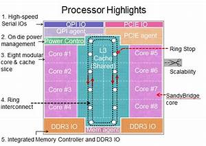 Intel Outs Future Xeon Chip Porn  U2022 The Register