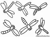 Coloring Pages Dragonfly Printable Animal sketch template