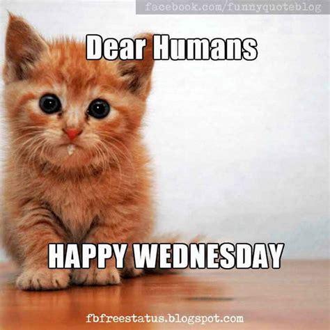 Happy Wednesday Meme - it s wednesday funny happy wednesday meme with wednesday quotes happy wednesday wednesday
