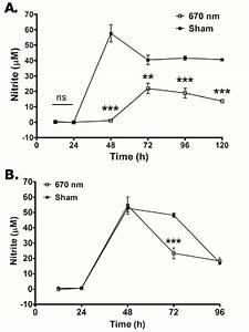 Pooled Heterogenous Lymphocytes From Peripheral Lymph