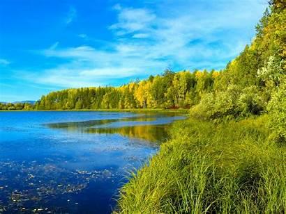 Landscape Summer Desktop Nature Wallpapers Forest Lake