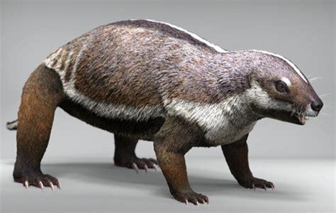 Palaeontologists find full fossil skeleton of bizarre