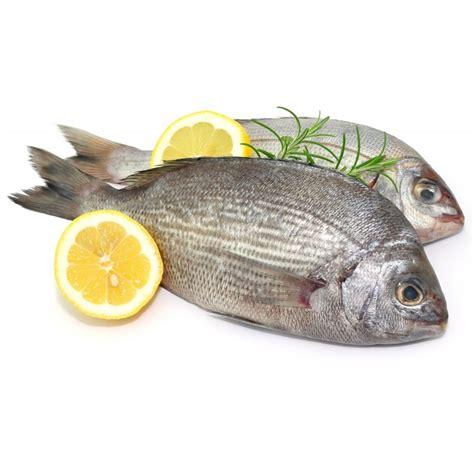 cuisiner dorade grise dorade grise achat vente de poisson frais en direct de