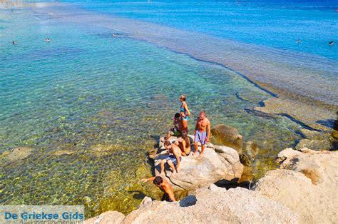Paradise Beach Mykonos Holidays In Paradise Beach Greece
