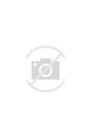 обучение в первом классе проводится санпин