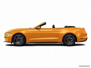 2020 Ford Mustang Convertible | Oz Leasing: Best New Car Deals & Leasing Services