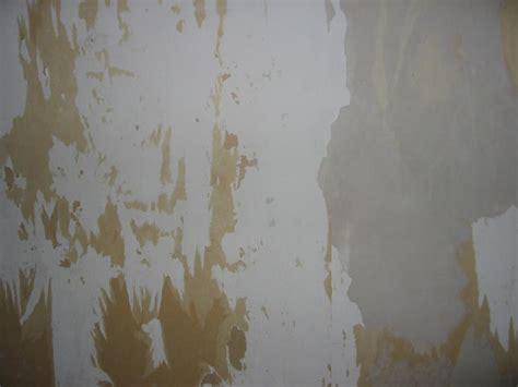 sanding walls  removing wallpaper gallery