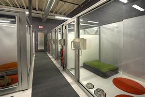 Boarding facilities doggymomcom for Dog boarding facilities