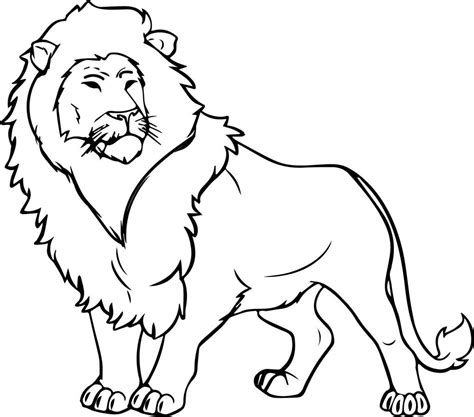 jungle coloring pages  coloring pages  kids