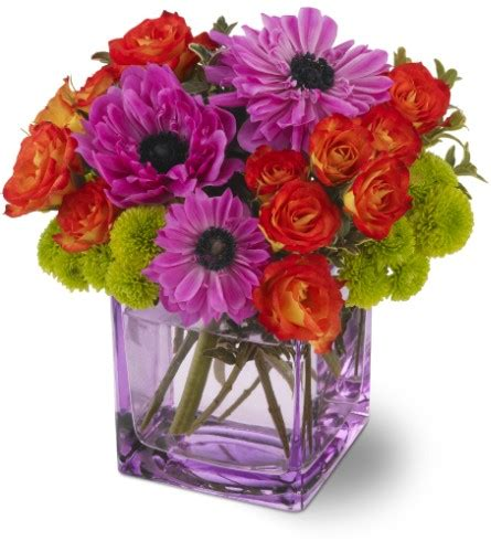 Spring Flowers Delivery Aurora On  Caruso & Company. Bsn Nursing Programs In Houston. How Much Does It Cost To Open A Savings Account. Private Investigator Sarasota. Job Posting Websites For Employers