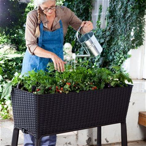 Keter  Easy Grow  Ee  Elevated Ee   Planter Gardens