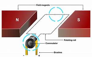 Where Coil Is Located In Electrical Motor With Diagram