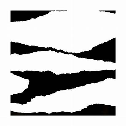 Paper Torn Clipartmag