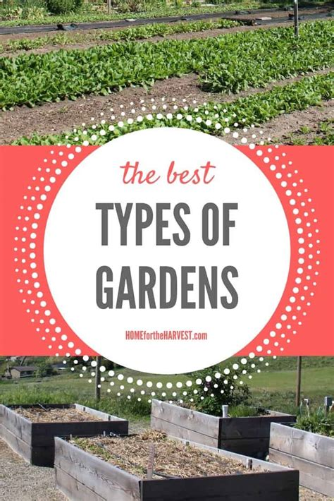 the best types of gardens and which one is right for you home for the harvest