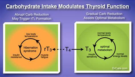 meals  morri eating   thyroid  mind