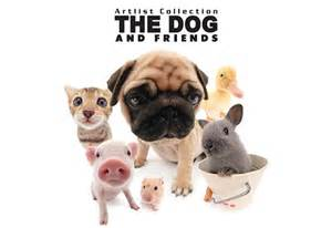 Artlist Collection, The Dog and Friends | 4Licensing ...