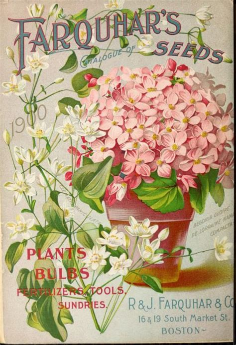 plant catalogs 1000 images about antique seed packets and catalogues on pinterest agriculture livingston