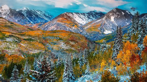 autumn color snow mountain forest  red  yellow leaves pine trees snow blue sky landscape
