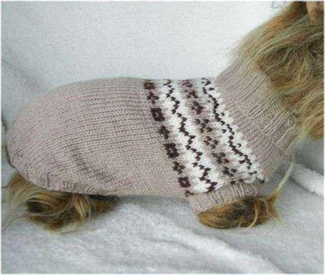 hundepullover selber stricken hundepulli stricken schoenstricken de
