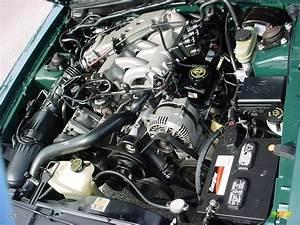 2000 Ford Mustang V6 Coupe 3.8 Liter OHV 12-Valve V6 Engine Photo #24217954 | GTCarLot.com