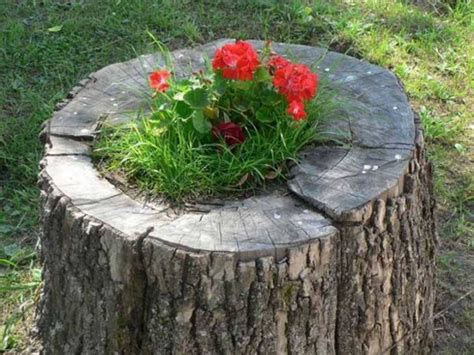 Garden Decoration Logs by Garden Decor Planters With Logs Upcycle