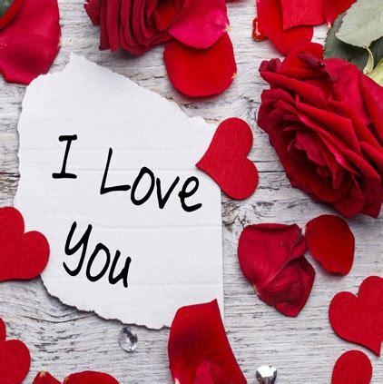beautiful hd love status images  whatsapp profile dp