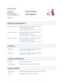 blue sky resumes review uk testing resume format