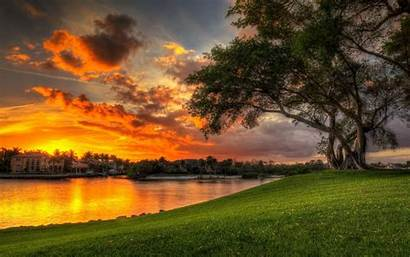 Sunset Water Tree Reflection Desktop Clouds Meadow