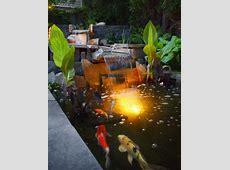 Koi Teich im Garten anlegen ein Extra fürs asiatische