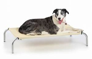 top 5 tips for keeping your pet comfortable in hot weather With best dog bed for hot weather