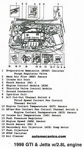 Volkswagen - Ubicacion De Sensores Y Componentes - Light Trucks - Suvs  2002