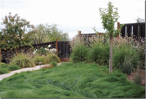 lawn replacement ideas landscaping ideas to replace grass pdf