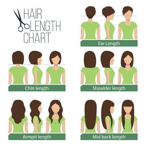 Women's Hair Lengths Explained   Headcurve