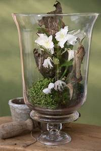 Bonsai Im Glas : beautiful table arrangement tischdekoration pinterest blumen orchideen und dekoration ~ Eleganceandgraceweddings.com Haus und Dekorationen