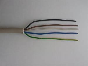 Nachttischlampe Ohne Kabel : 2 adriges kabel 3 adrige lampe automobil bau auto systeme ~ Michelbontemps.com Haus und Dekorationen