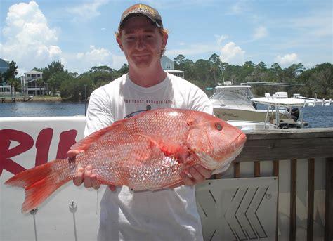 wright snapper kenneth fishing lake dr fl richard buddy grouper fine season opened dad