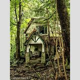 Inside Abandoned Victorian Mansions | 736 x 981 jpeg 253kB