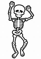 Coloring Halloween Skeleton Printable Esqueleto Skelett Skeletons Anatomy Human Ausmalbilder Humano Crafts Ossos Aos Brincadeiras Nome Atividades Momjunction Dancing Clase sketch template
