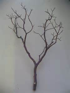 manzanita branches wholesale decorating ideas casual image of diy brown tree