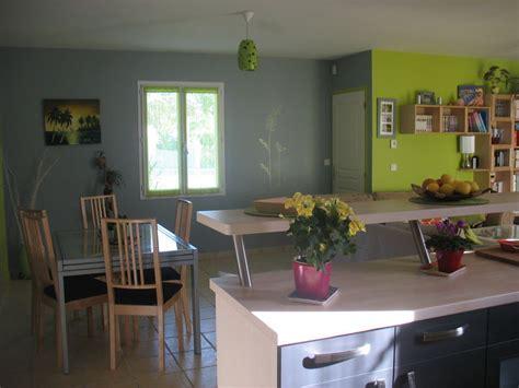 cuisine gris et vert anis decoration salon vert anis et gris