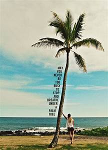 Best 25+ Palm t... Inspiring Palm Tree Quotes